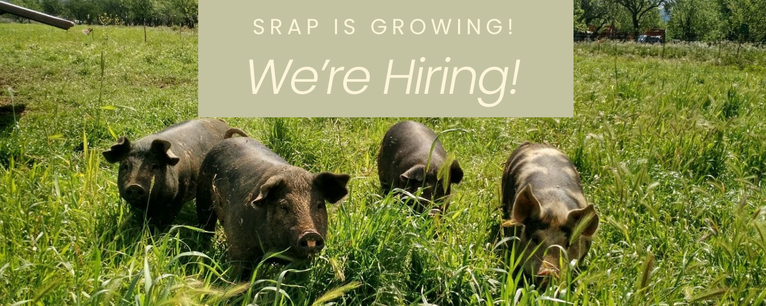 SRAP is Growing! We are Hiring!